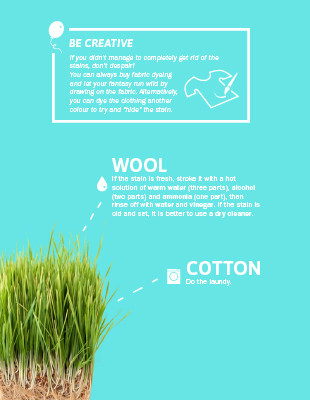 Anteprima_Infografica-How_to_remove_stains-310x400