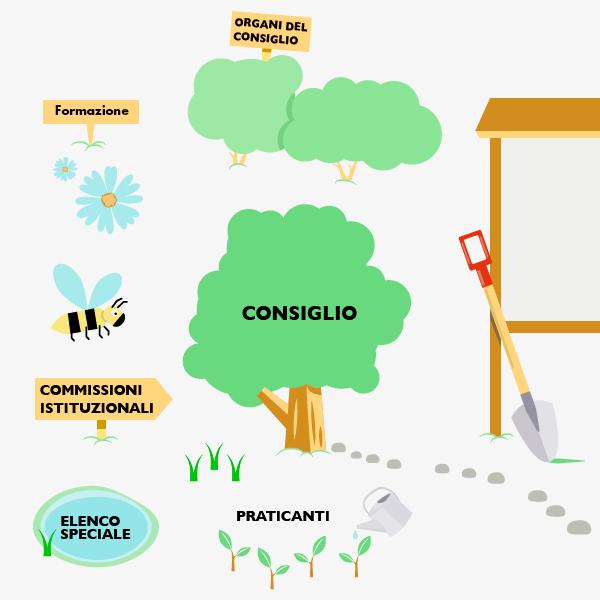 Infografica-Struttura_commercialisti